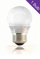 Screw Type LED Bulb